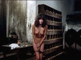 Carla Romanelli nude - The Sensuous Nurse (1975)