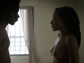 Natalie Paul nude - Crown Heights (2017)