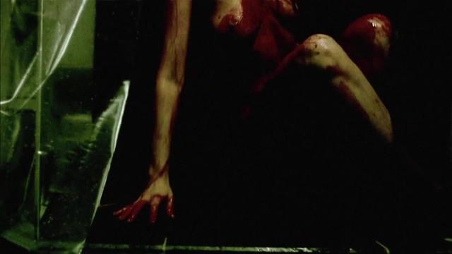 Susie Christiansen nude - Skizo (2008)