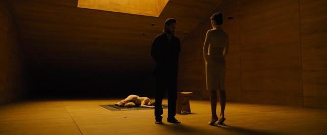 Sallie Harmsen nude - Blade Runner 2049 (2017)