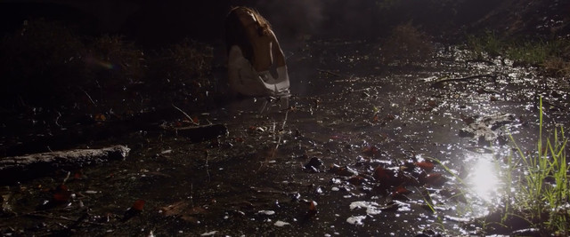 Alexandra Bokova nude - Mermaid Down (2019)