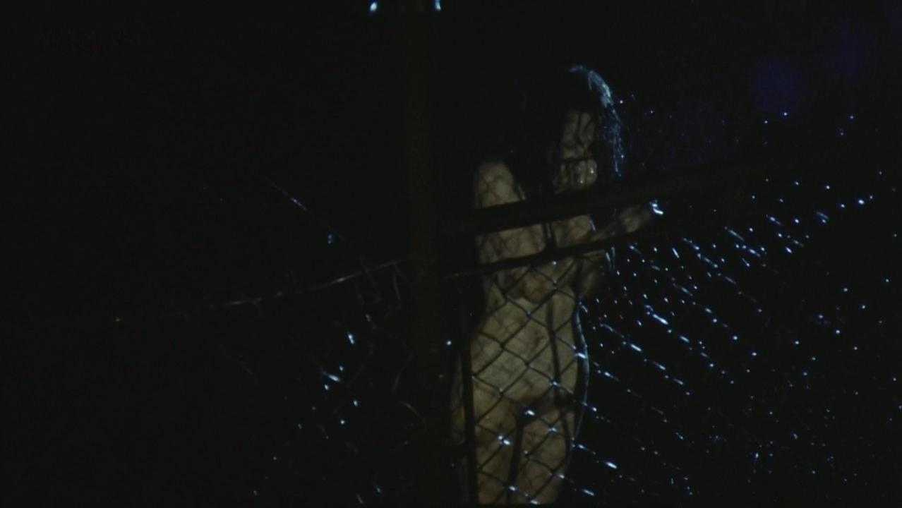Anna Geislerova nude - Requiem pro panenku (1992)