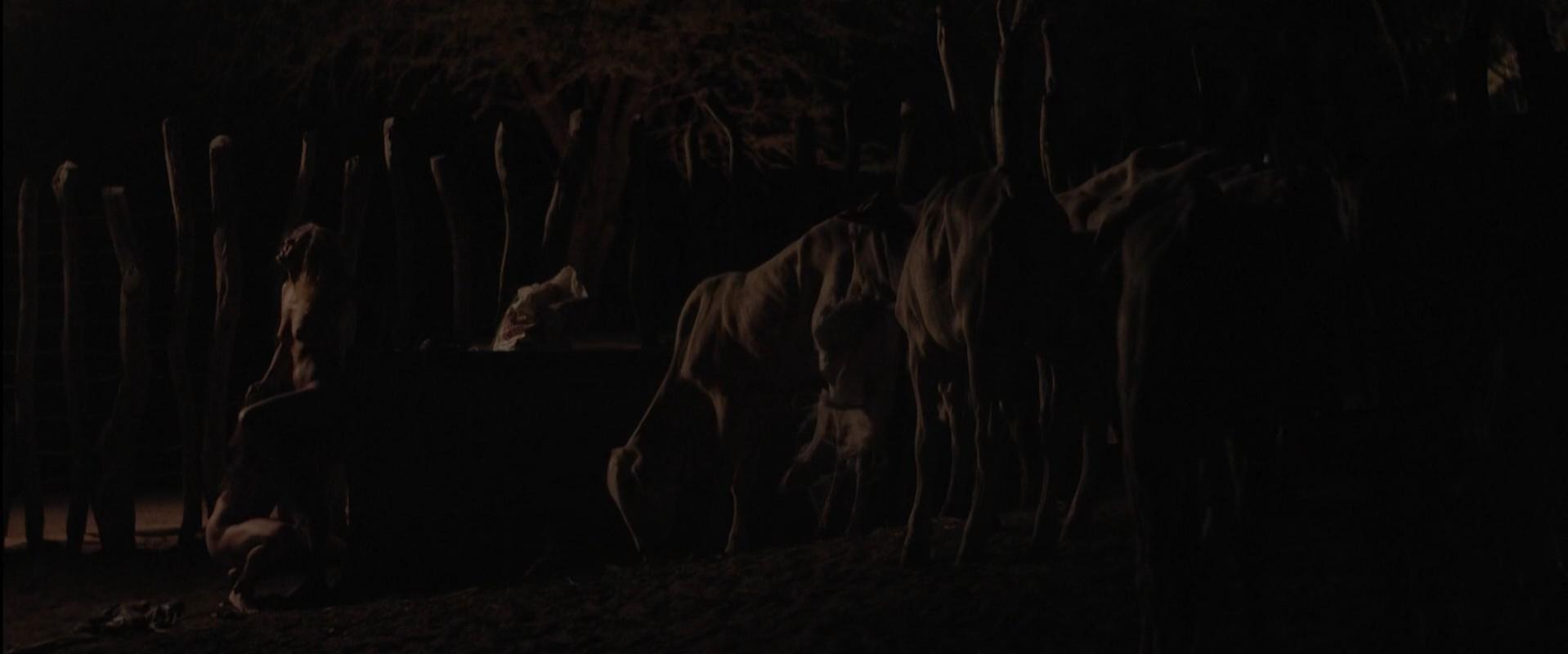 Maeve Jinkings nude - Boi neon (2015)