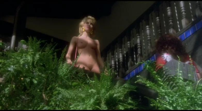 Monique Gabrielle nude, Corinne Wahl nude, Tracy Hutchinson nude - Amazon Women on The Moon (1987)